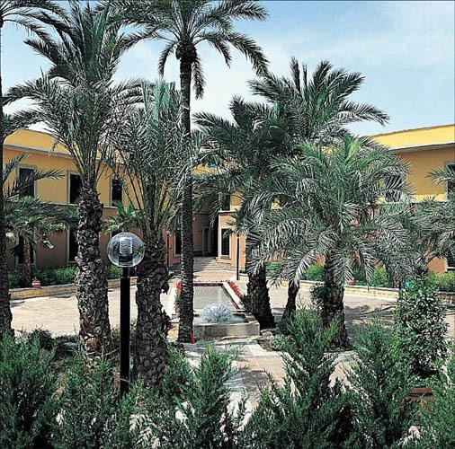 Hotel jard n milenio elx spain for Jardin milenio