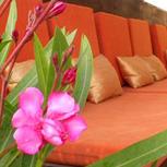 Photo from hotel Kalia Breeze Villa Hotel