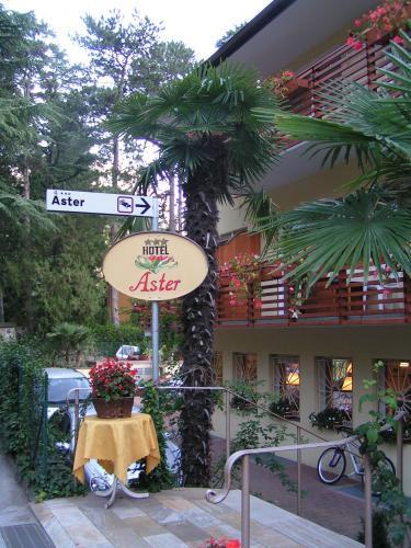 hotel aster merano italy